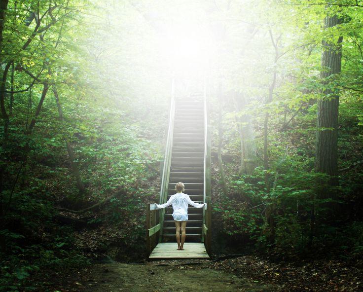 Stairway in the Green by Kate Klnley via Flickr