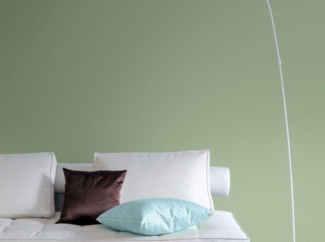 """Peinture couleur """"tea"""" Pantone tollens. http://www.m-habitat.fr/murs-et-sols/revetement-des-murs/comment-appliquer-de-la-peinture-sur-un-mur-2094_A"""