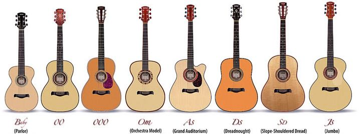 Comparison chart of acoustic guitar sizes showing a parlor guitar in relation to all the other guitar types.