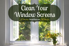 Dirty screens are a two-fold problem: they mess with air quality and are easily damaged. Follow these steps to clean your window screens.