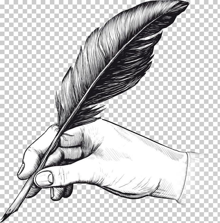 Quill Fountain Pen Drawing Writing Feather Quill Illustration Png Clipart Fountain Pen Drawing Pen Drawing Pen Illustration