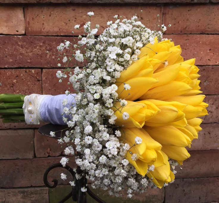 #tulipflower #tulip #tulipwedding #yellowtulip