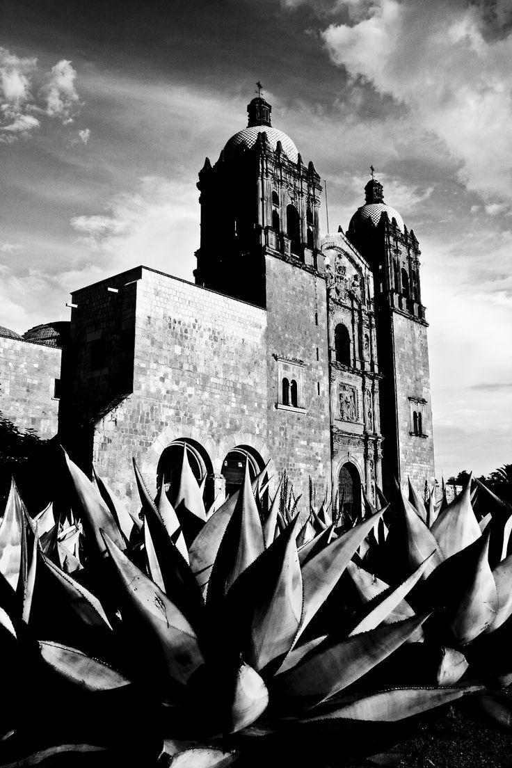 Templo Santo Domingo de Guzman - Templo Santo Domingo de Guzman Oaxaca de Juarez Siglo XVI