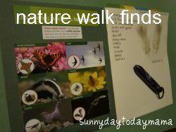Nature walk finds http://sunnydaytodaymama.blogspot.co.uk/2012/03/ogre-poo-and-other-nature-walk-finds.html