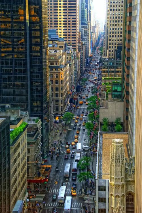 Looking Down Fifth Avenue, Manhattan, New York