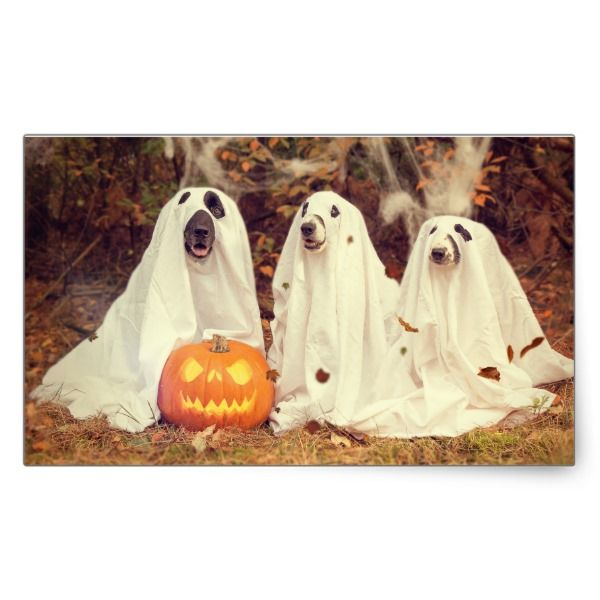 Adorable Ghost Dog Halloween Sticker #halloween #holiday #creepyhollow #stickers