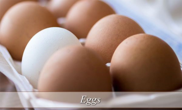 egg-egg nutrition-egg benefits-egg white nutrition-weight loss diet-best foods for weight loss-weight loss diet plan-weight loss foods-diet to lose weight-best diet for weight loss-best weight loss diet #egg #eggs #diet #food #heathyeating #protein #weightloss #loseweight