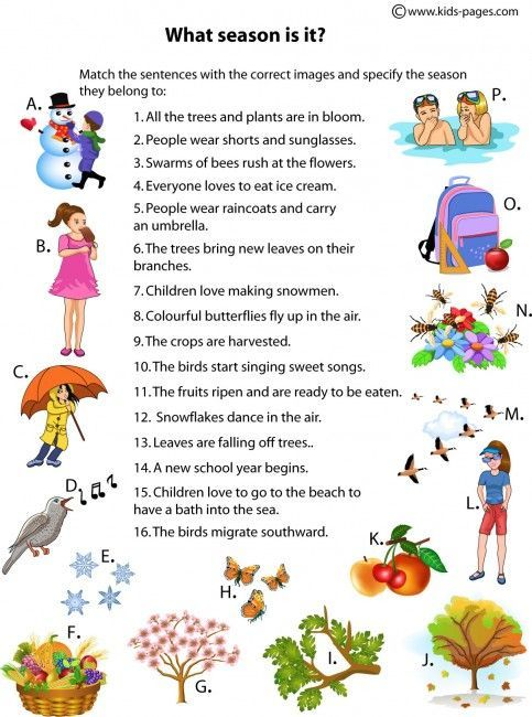 Kids Pages - What Season Is It ?: