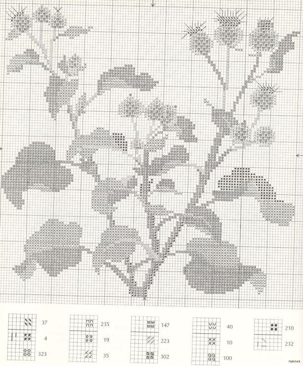 Gallery.ru / Фото #21 - Medicinal Plants - Mosca