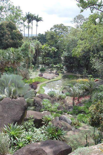 Paisagismo Curso Brighton suas dicas de paisagismo, Landscape Gar …   – Vegetable Gardening Tips