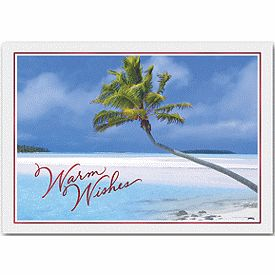 13 best beach christmas cards images on pinterest beach christmas send customers your business holiday greetings with caribbean holiday holiday cards from deluxe reheart Choice Image
