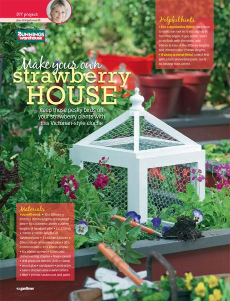 I like the look of this little 'strawberry house', Victorian-style cloche inspired
