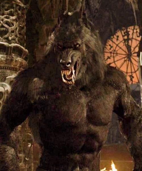 Van Helsing werewolf. HUgh Jackaman is the best movie werewolf! Just look at his pointy little ears!