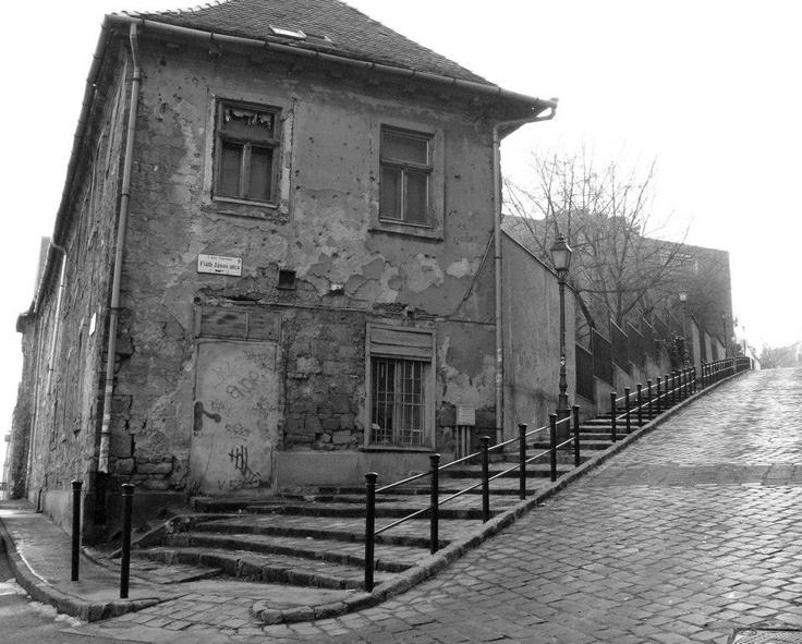 Fiáth János utca