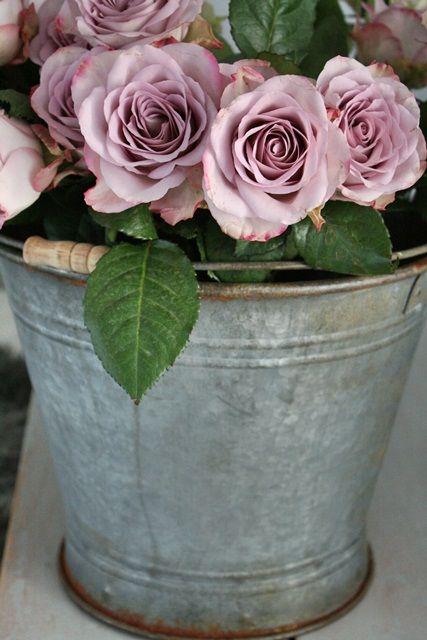 Flowers in galvanized bucket so pretty! Great wedding decoration!