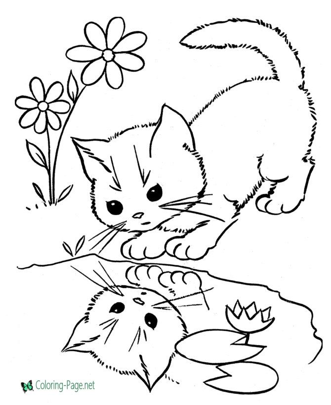 Cat Coloring Page Animal Coloring Pages Cat Coloring Book Cat Coloring Page