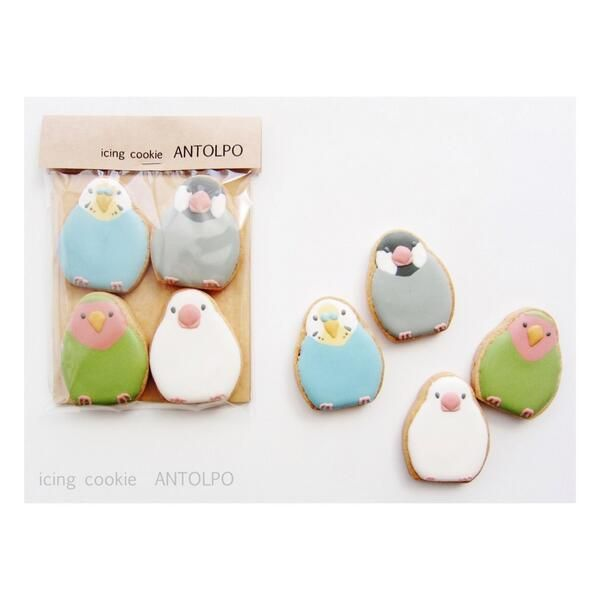 small parrot cookies