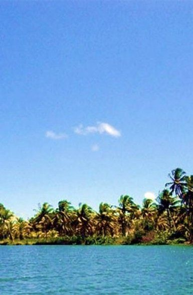 Piaçabuçu-szigetek, Brazília