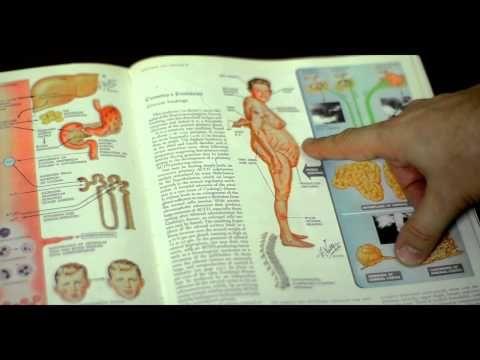 dr berg adrenal diet plan pdf