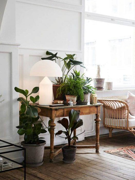 vintage furniture, lots of plants, deco style lamp with modern twist