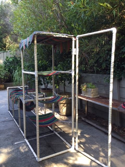 Cat enclosure made from PVC connectors and pipe http://www.catsonyards.com/product-category/cages/
