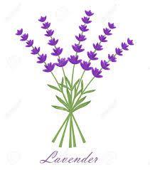 lavender logo - Google Search