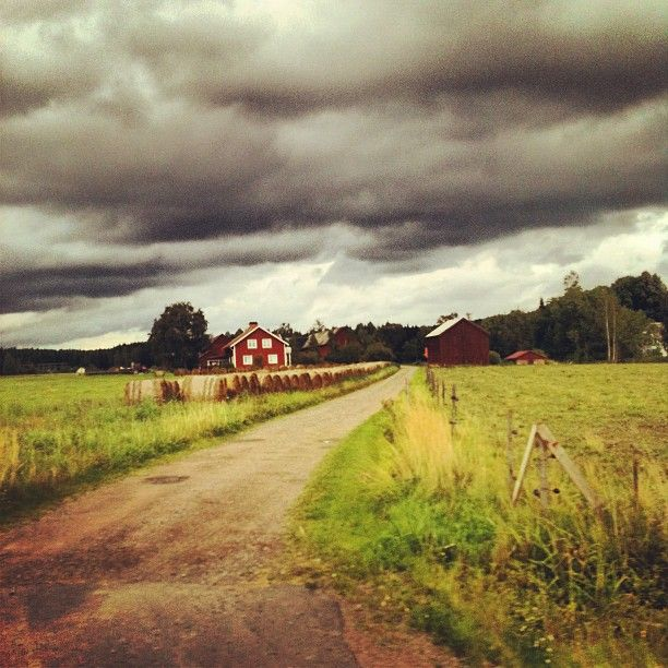 Hay Bales in the Countryside.   Värmland, Sweden Landscape.   #Instagram photo