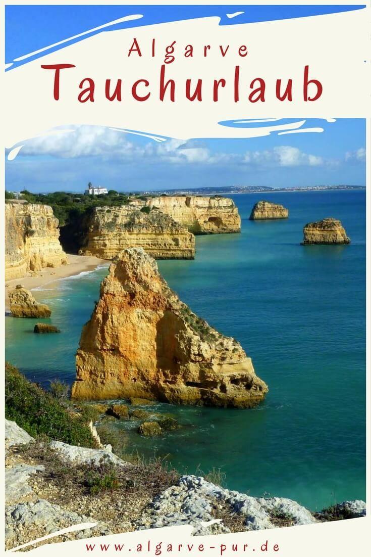 Tauchen in der Algarve: Höhlen, Grotten, Schiffswracks