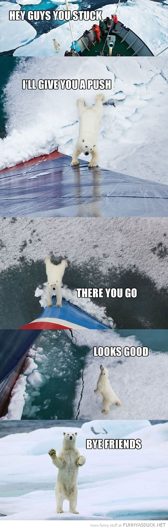 Good Guy Polar Bear