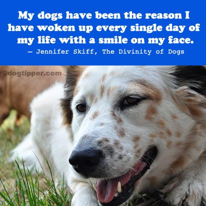 My dogs have been the reason I have waken up every single day of my life with a smile on my face: Jennifer Skiff