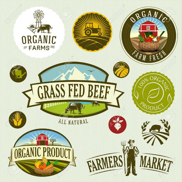 24679767-organic-farm-Stock-Vector-farm-farmer-market.jpg (1300×1300)
