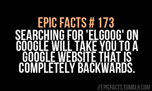 epic facts | #173 you know you are going to do this. just admit it lol. I did lol