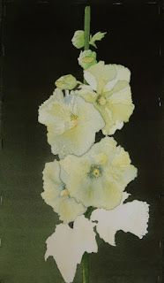 Studio at the Farm: With a GREAT Sigh of Relief ... the Hollyhock Is D...