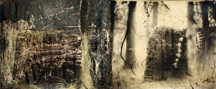 """Jessie Mann, Sally Mann, Liz Liguori and the Mountain Lake a Workshop, """"Metempsychosis (Diptych I)"""", 2011, Photo developer, laser imagery, oil paint, and linseed oil, 40 x 100 inches. From our current exhibition Metempsychosis, up through November 16."""