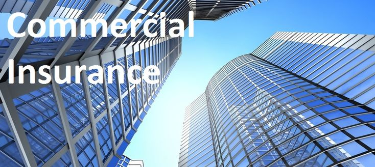 Looking for business insurance in New York? Call Kenneth Bieber, Inc. toll free today at 800-624-8146 or visit us online at http://www.kennethbieber.com/new-york-insurance/
