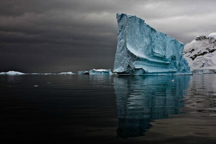 Iceberg by Camille Seaman