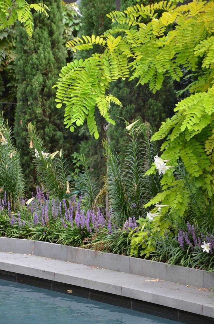 die besten 25 kew gardens christmas ideen auf pinterest