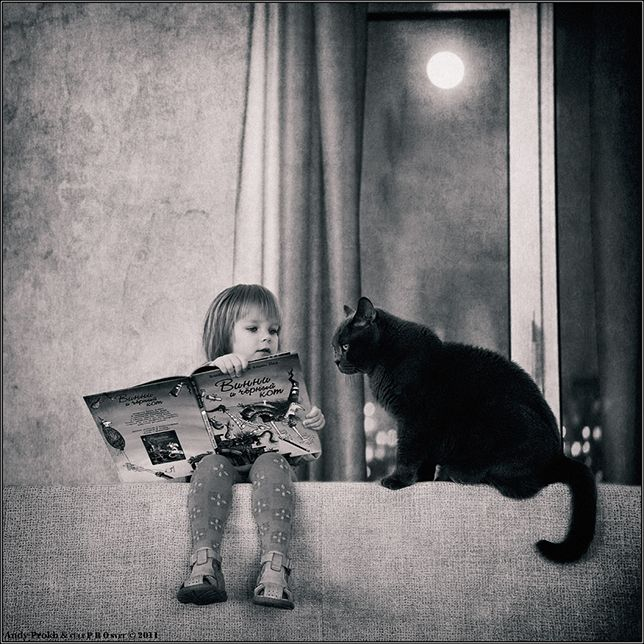 A Girl and Her Cat: Storytime Click for Andy Prokh's photos of his 5-year-old daughter Katerina and the family cat, 7-year-old British shorthair LiLu.