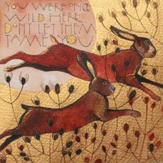 Hares « Sam Cannon Art