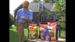 How To Tell If a Lawn Needs Aerating   Bayer Advanced