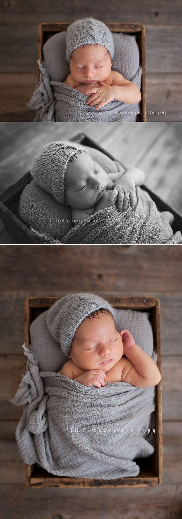Newborn in a crate, newborn posing, North Vancouver newborn photographer, Little Chickadees Newborn Photography