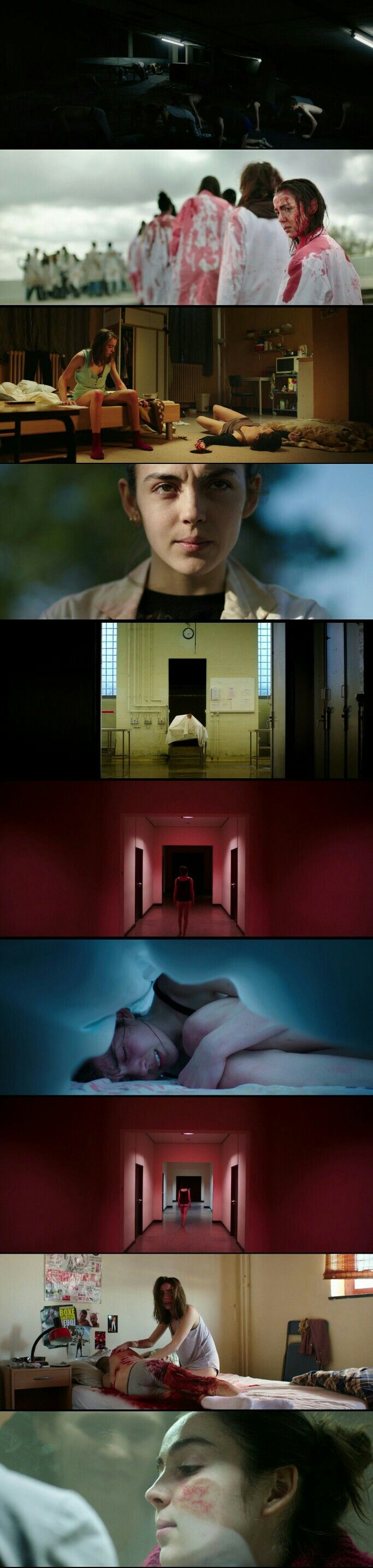 Tasteful film with colorful Cinematography. Movie: Raw (2017)