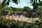 Wroxham Barns 2