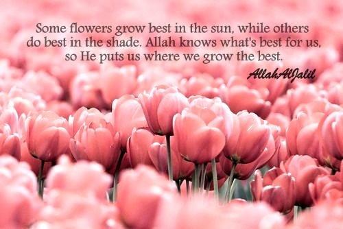 Well said. :) #Allah