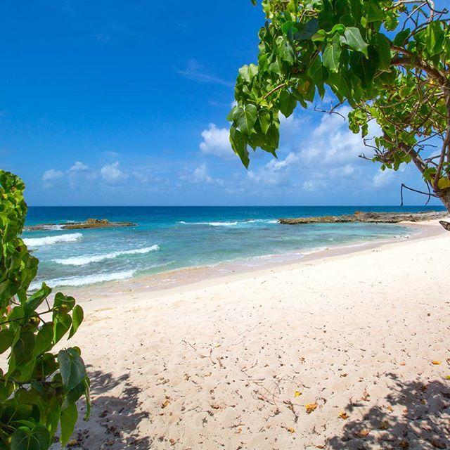 St. François, #guadeloupe ZyciePodPalmami.pl #zyciepodpalmami #caribbean #caribbeansea #sea #paradise #holiday #chill #relax #travel #ocean #tropical #karaiby #raj #wakacje #relaks #morze #natura #tropiki #peace #quiet #beach #playa #plaża @ig_guadeloupe_ @ig_caribbean #guadeloupeislands #gwada #gwadloup