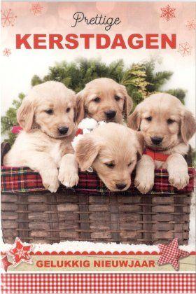 Prettige kerstdagen en een Gelukkig Nieuwjaar!    Kerstkaarten met schattige puppies