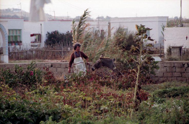 Fortini in Agios Prokopios - in the 80s