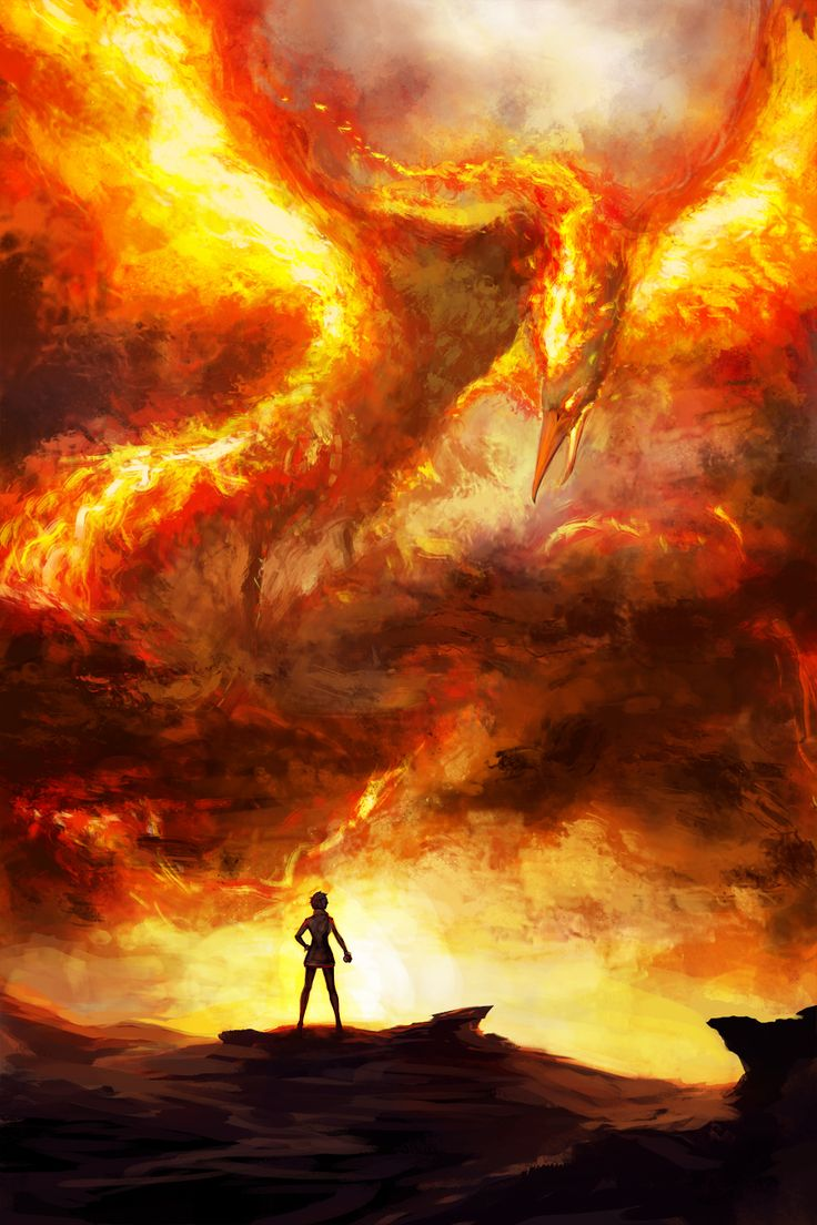 [Art] Team Valor Speedpainting (Moltres!) : pokemongo