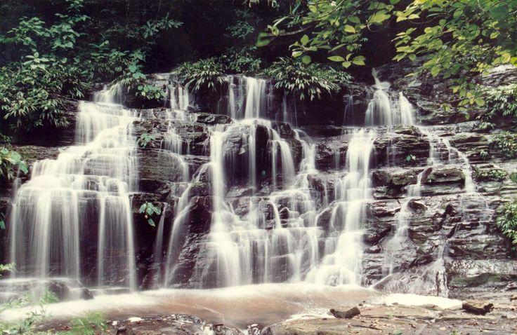 Archivo fotográfico de Parques Nacionales Naturales