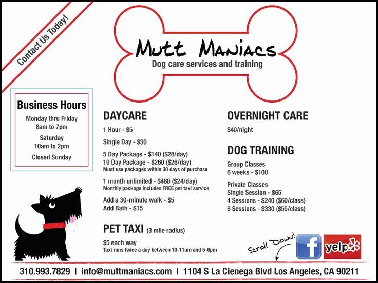 dog boarding report card template elegant 15 best images